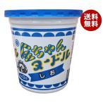【送料無料】徳島製粉 金ちゃんヌードル すっきりしお 73g×12個入