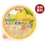 送料無料 ハウス食品 やさしくラクケア まるで果物のようなゼリー マンゴー 60g×48個入