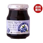 送料無料 スドージャム 信州須藤農園 100%フルーツ ブルーベリー 185g瓶×6個入