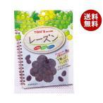 【送料無料】【2ケースセット】東洋ナッツ食品 トン TNSF レーズン 110g×10袋入×(2ケース)