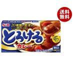 送料無料 【2ケースセット】エスビー食品 S&B とろけるカレー辛口 180g×10個入×(2ケース)