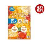 送料無料 【2ケースセット】サラヤ 匠の塩飴 マンゴー味 100g×20本入×(2ケース)