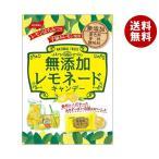 送料無料 【2ケースセット】ノーベル製菓 無添加レモネード 90g×6袋入×(2ケース)