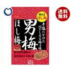 【送料無料】ノーベル製菓 男梅ほし梅 20g×6個入