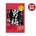 【送料無料】【2ケースセット】ノーベル製菓 男梅ほし梅 20g×6個入×(2ケース)