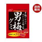 送料無料 【2ケースセット】ノーベル製菓 男梅グミ 38g×6個入×(2ケース)