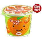 送料無料 【2ケースセット】カバヤ フルーツ缶グミ 50g×12個入×(2ケース)