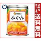 【送料無料】楽園果実 みかん・シラップづけ(ライト) 350g×24個入