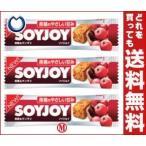 【送料無料】大塚製薬 SOYJOY(ソイジョイ) 黒糖&サンザシ 30g×48本入