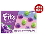【送料無料】ロッテ Fit's グレープミックス 12枚×10個入