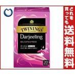 【送料無料】片岡物産 トワイニング ダージリン 2.1g×20袋×24個入