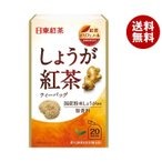 【送料無料】三井農林 日東紅茶 しょうが紅茶 2.2g×20袋×48個入