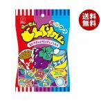 送料無料 【2ケースセット】パイン どんぐりガムミックス 110g×10袋入×(2ケース)