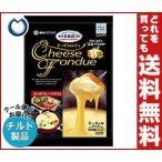【送料無料】【2ケースセット】【チルド(冷蔵)商品】雪印メグミルク 雪印北海道100 チーズフォンデュ 220g×10袋入×(2ケース)