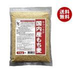 送料無料 【2ケースセット】種商 国内産もち麦 キラリモチ 1kg×10袋入×(2ケース)