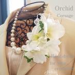 コサージュ デンファレ ホワイト 入園入学式 卒園卒業式 ヘッドドレス(2-corsage057)