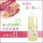 切花栄養剤/切花延命剤 キープ・フラワー 2L