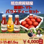 【送料無料】熊本県阿蘇産高原トマトとバラエティーセット (1)阿蘇村上農園 新品種トマト1.5kg(2)トマトケチャップ(3)ドレッシング)【予約 入荷次第発送】