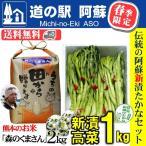 熊本 阿蘇 新漬けたかな 青高菜 1kg お米 森のくまさん 2kg 人気 絶品 手作り 阿蘇おふくろ工房 立石翼