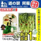 熊本 阿蘇 新漬けたかな 青高菜 1kg お米 こしひかり 2kg 人気 絶品 手作り 阿蘇おふくろ工房 大和農園