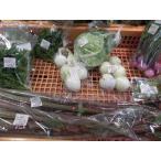 美波町 小林さんの野菜