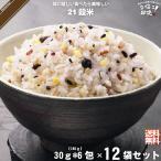 「12個セット」 二十一穀米 スティック (30g×6包) 雑穀 雑穀米 21穀 特0
