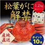 ゆで松葉かに 1.2kg カニ 蟹 かに 送料無料