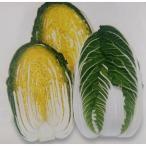 白菜種 F1大福75 (2ml)