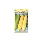 トウモロコシ種 F1 ミルフィーユ(100粒) [栽培用 種子 とうもろこし 玉蜀黍 スイートコーン]