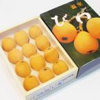 千葉県産 温室びわ 2Lサイズ 12玉