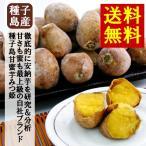 送料無料 2000円ポッキリ 安納芋 お試しパック レンジで簡単 冷凍焼き芋「種子島甘蜜芋・みつ姫」500g×1袋 まるでスイーツ おやつ さつまいも