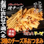 ショッピングお試しセット 1,000円 ポッキリ 送料無料 北海道チーズづくしのおつまみセット メール便 セール