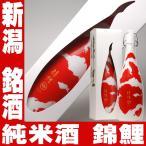 敬老の日 プレゼント お酒 日本酒 ギフト 今代司 錦鯉 純米酒 720ml にしきごい