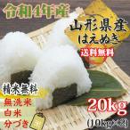 米 お米 10kg×2 はえぬき 玄米20kg 令和2年産 山形産 白米・無洗米・分づきにお好み精米 送料無料 当日精米