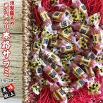 燻製職人の[米沢牛入り本格サラミ2袋] 60g×2袋 おつまみ カルパス サラミ ドライソーセージ 珍味 メール便 送料無料