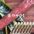 サラミ 匠のこだわり さらみソーセージ130g×7本【送料無料】【メール便】