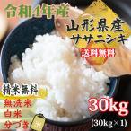 新米 米 お米 ササニシキ 玄米30kg 令和2年産 山形産 白米・無洗米・分づきにお好み精米 送料無料 当日精米
