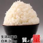 米 生活応援米(当店ブレンド米より下ランク) 白米30kg ×1袋 令和2年度 送料無料 徳用 お試し 業務用 訳あり ご家庭用 あすつく