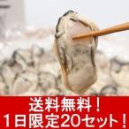 【送料無料・1日限定20セット】牡蠣の達人が育てた宮城県浜市かき 生食用500g