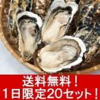 【送料無料・1日限定20セット】宮城県・浜市産殻付きかき(1年物)15貝入