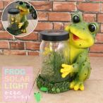 ガーデンソーラーライト カエル 置き物 置き型 玄関 / 在庫処分