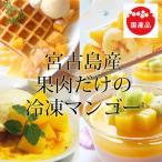 宮古島産 冷凍マンゴー(国産)1kg 送料無料