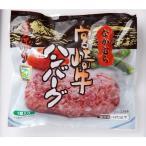 冷凍 ハンバーグ ※常温品冷蔵品との同梱不可 宮崎牛ハンバーグ 中村食肉:4933932005019