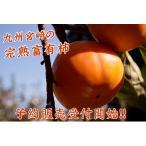 お歳暮に【送料無料】宮崎産完熟富有柿【赤秀】Mサイズから2Lサイズ3kg宮崎の太陽をいっぱい浴びた希少な柿です【柿】