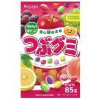 つぶグミ 【春日井製菓】6袋入り1BOX 1袋当り96円税別 海外でも人気!