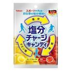 塩分チャージキャンディ 110g 【カバヤ】 熱中症対策に!