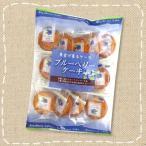 ブルーベリーケーキ 13個入【クローバー製菓】果実が香るケーキ・半生菓子