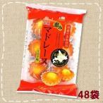 恵み マドレーヌ ミルク味 個装 6個入×48袋 大量288個【金城製菓】北海道産 牛乳仕立て