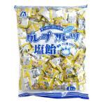 1キロ グレープフルーツ 塩飴 ×10袋 桃太郎製菓 1kg個装タイプ