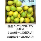 国産ノーワックスレモン 3kg(24〜30個_紀州産)【産地直送】(収穫時期10月〜翌5月)